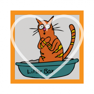 Cat Litters & Trays